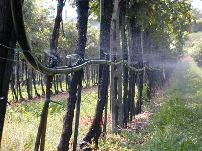 irrigazione a spruzzo edagricole